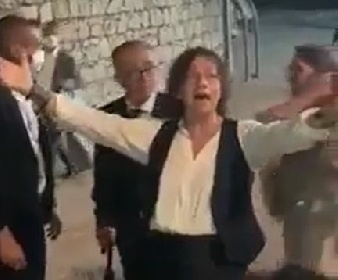 https://www.ragusanews.com//immagini_articoli/13-09-2021/gianna-nannini-molla-i-vip-e-canta-in-siciliano-coi-suoi-fan-video-280.jpg