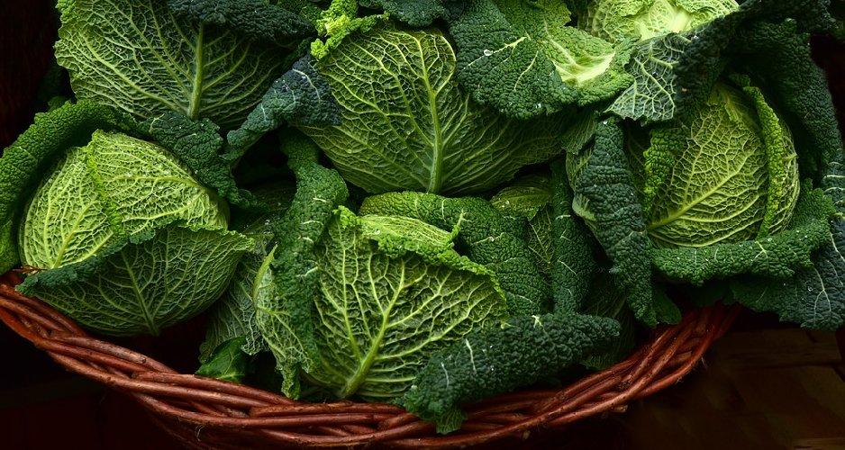 https://www.ragusanews.com//immagini_articoli/13-10-2019/dieta-cavolo-perdere-5-chili-in-7-giorni-500.jpg