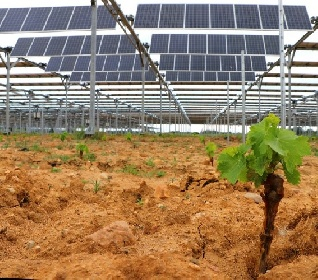 https://www.ragusanews.com//immagini_articoli/13-10-2021/energia-falck-renewables-lending-crowdfunding-per-parco-a-scicli-280.jpg