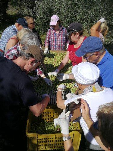 https://www.ragusanews.com//immagini_articoli/13-11-2018/turismo-germania-sicilia-scoperta-dellarte-impres-500.jpg