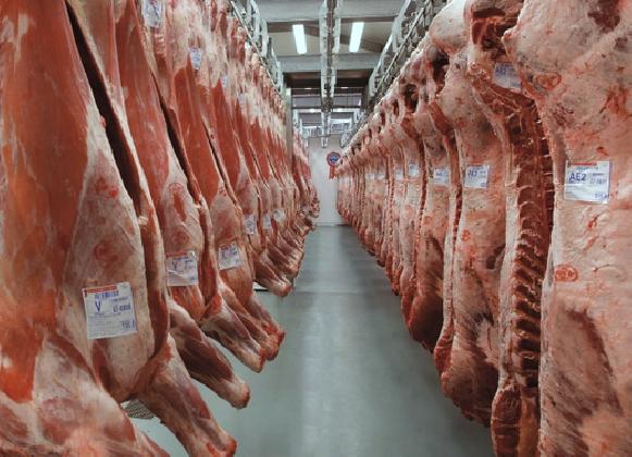 http://www.ragusanews.com//immagini_articoli/13-12-2016/tentato-furto-di-carne-in-un-azienda-ragusana-420.jpg