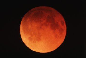 https://www.ragusanews.com//immagini_articoli/14-01-2019/eclissi-luna-notte-luna-rossa-240.jpg