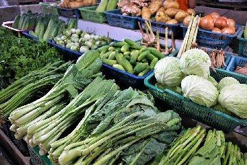https://www.ragusanews.com//immagini_articoli/14-01-2020/vuoi-tornare-in-forma-dopo-le-feste-prova-la-dieta-zen-240.jpg