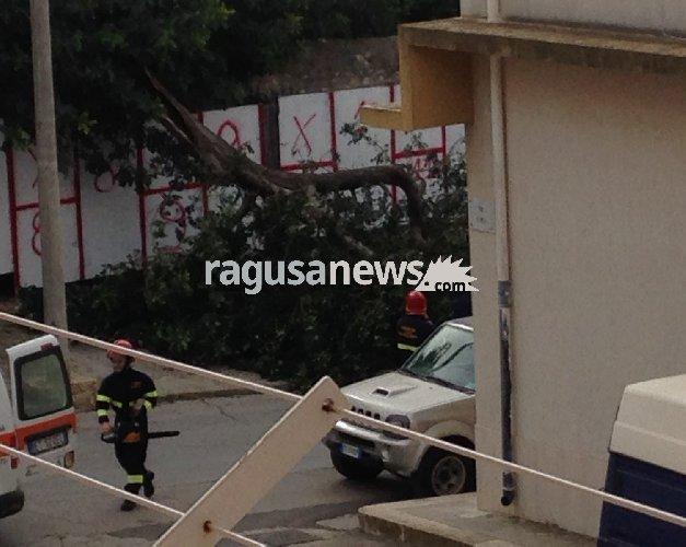 https://www.ragusanews.com//immagini_articoli/14-04-2018/forti-raffiche-vento-alberi-spezzati-sulle-strade-provincia-500.jpg