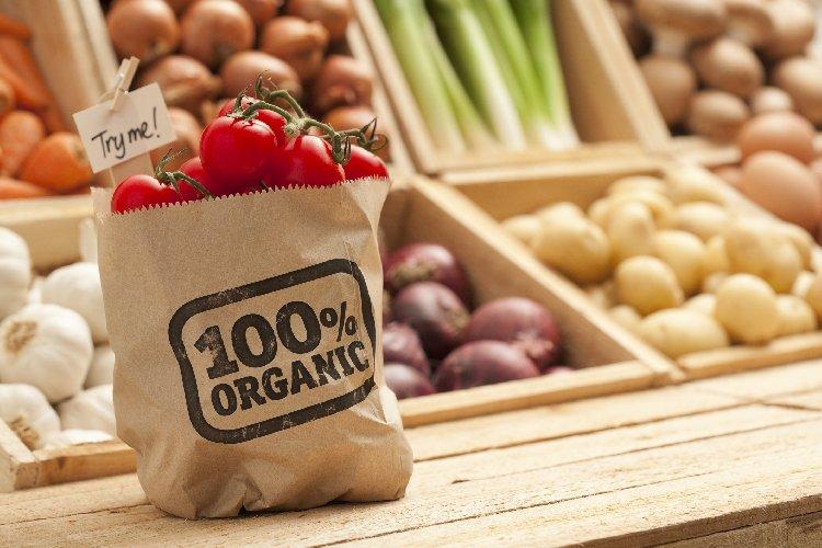 https://www.ragusanews.com//immagini_articoli/14-04-2019/diete-saperne-di-piu-per-mangiare-meglio-500.jpg
