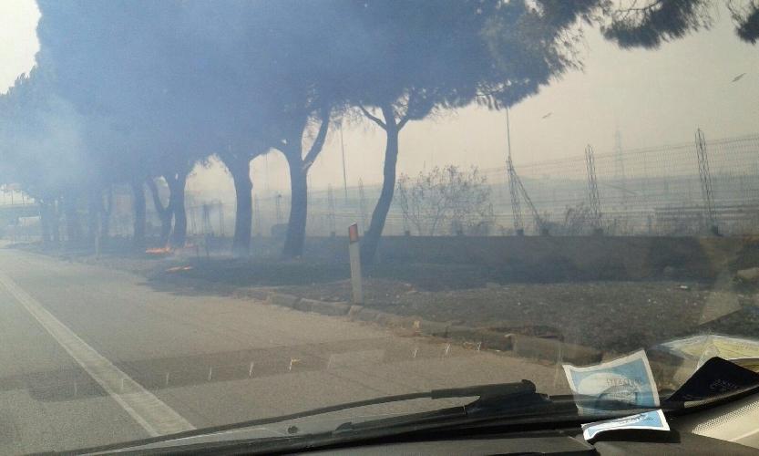 http://www.ragusanews.com//immagini_articoli/14-07-2017/incendio-cataniapalermo-autostrada-chiusa-dallanas-500.jpg