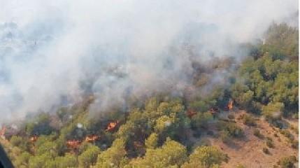 https://www.ragusanews.com//immagini_articoli/14-08-2020/attesi-40-gradi-a-ferragosto-in-sicilia-240.jpg