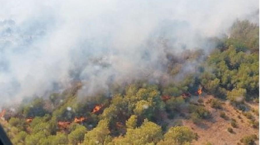 https://www.ragusanews.com//immagini_articoli/14-08-2020/attesi-40-gradi-a-ferragosto-in-sicilia-500.jpg