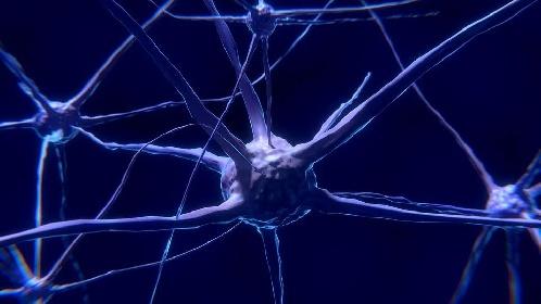 https://www.ragusanews.com//immagini_articoli/14-10-2021/dieta-mind-la-dieta-che-promuove-il-benessere-del-cervello-280.jpg