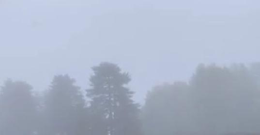 https://www.ragusanews.com//immagini_articoli/14-10-2021/nevica-a-piano-provenzana-video-280.jpg