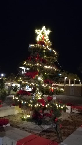 https://www.ragusanews.com//immagini_articoli/14-12-2018/porto-marina-ragusa-artigianato-pescatori-500.jpg