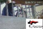 https://www.ragusanews.com//immagini_articoli/14-12-2018/ragusa-fermati-autori-furto-agriturismo-100.jpg