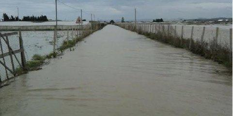 https://www.ragusanews.com//immagini_articoli/14-12-2019/e-straripato-il-fiume-dirillo-240.jpg