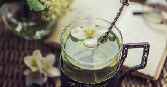 https://www.ragusanews.com//immagini_articoli/15-01-2021/detox-la-tisana-a-base-di-te-verde-per-purificarti-280.jpg