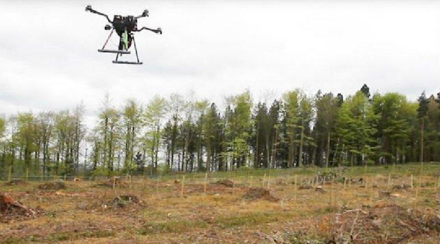 https://www.ragusanews.com//immagini_articoli/15-02-2018/droni-semineranno-foreste-cielo-500.jpg