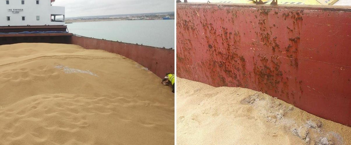 https://www.ragusanews.com//immagini_articoli/15-03-2018/respinte-tonnellate-grano-duro-proveniente-kazakistan-500.jpg