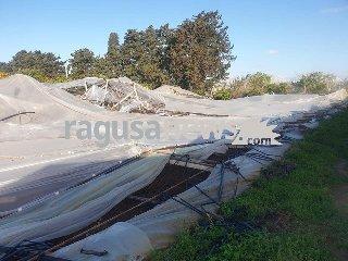 https://www.ragusanews.com//immagini_articoli/15-04-2019/tromba-d-aria-a-santa-croce-danni-serre-foto-240.jpg
