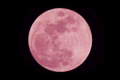 https://www.ragusanews.com//immagini_articoli/15-04-2021/occhi-al-cielo-arriva-la-superluna-rosa-280.jpg
