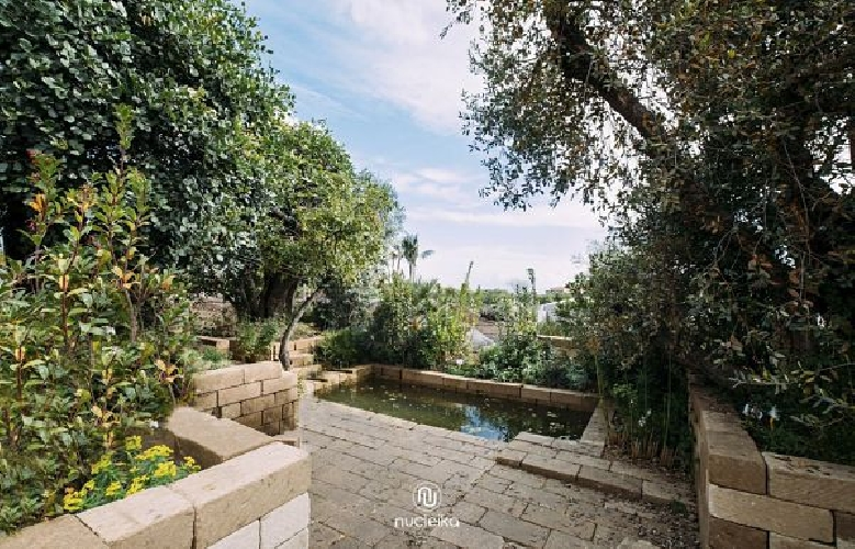 https://www.ragusanews.com//immagini_articoli/15-06-2017/giardini-sicilia-inedita-proposta-turistica-500.jpg