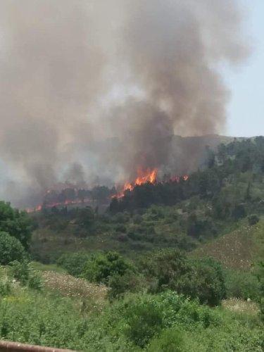 https://www.ragusanews.com//immagini_articoli/15-06-2019/incendio-di-un-bosco-tra-monterosso-e-giarratana-in-azione-canadair-500.jpg