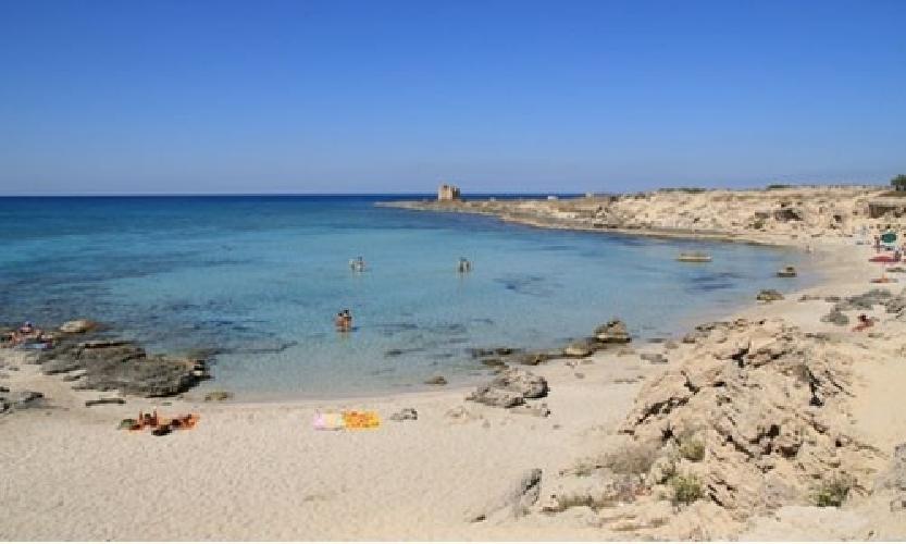https://www.ragusanews.com//immagini_articoli/15-07-2014/discariche-in-spiaggia-a-scoglitti-500.jpg
