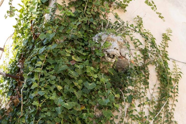 https://www.ragusanews.com//immagini_articoli/15-07-2021/1626366740-ragusa-il-fantasma-della-dama-e-il-castello-invenduto-foto-7-500.jpg