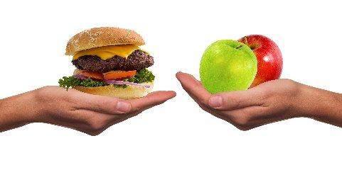 https://www.ragusanews.com//immagini_articoli/15-09-2018/dieta-lemme-funziona-schema-settimanale-240.jpg