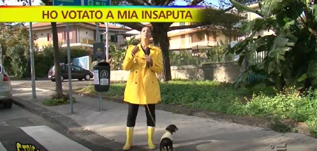 https://www.ragusanews.com//immagini_articoli/15-11-2017/votato-insaputa-striscia-caso-votanti-interdetti-video-500.jpg