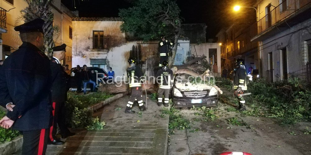 https://www.ragusanews.com//immagini_articoli/15-11-2019/1573857534-tragedia-sfiorata-albero-di-carrubo-rovina-su-mercedes-video-1-500.jpg