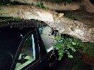 https://www.ragusanews.com//immagini_articoli/15-11-2019/tragedia-sfiorata-albero-di-carrubo-rovina-su-mercedes-video-100.jpg