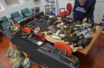 http://www.ragusanews.com//immagini_articoli/16-01-2018/cacciatori-frodo-maltesi-pozzallo-240.jpg