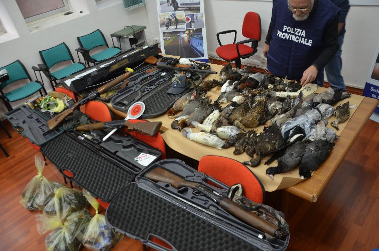 https://www.ragusanews.com//immagini_articoli/16-01-2018/cacciatori-frodo-maltesi-pozzallo-500.jpg