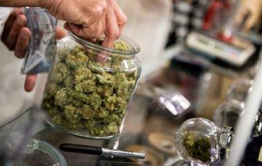 https://www.ragusanews.com//immagini_articoli/16-01-2019/cannabis-legale-caso-ragusa-240.jpg