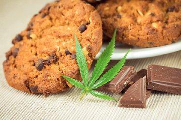 https://www.ragusanews.com//immagini_articoli/16-01-2020/arrivano-i-biscotti-cannabis-240.jpg