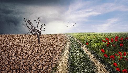 https://www.ragusanews.com//immagini_articoli/16-06-2021/sicilia-a-secco-l-acqua-abbandona-la-terra-280.jpg