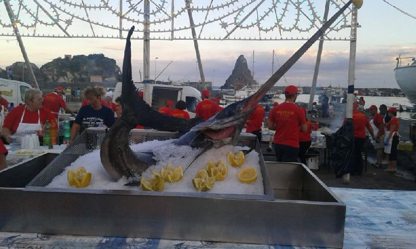 https://www.ragusanews.com//immagini_articoli/16-07-2018/sagra-pesce-acitrezza-500.jpg
