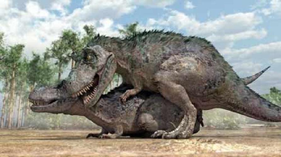 https://www.ragusanews.com//immagini_articoli/16-08-2014/siti-culturali-a-scicli-e-caos-il-ritorno-dei-dinosauri-500.jpg