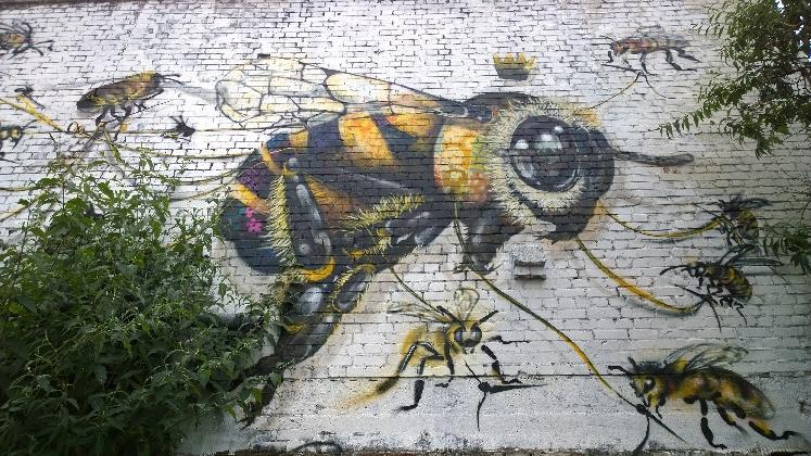 https://www.ragusanews.com//immagini_articoli/16-09-2016/donk-la-street-art-londinese-in-mostra-a-vittoria-420.jpg