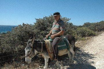 https://www.ragusanews.com//immagini_articoli/16-10-2019/a-modica-escursione-a-dorso-di-mulo-240.jpg