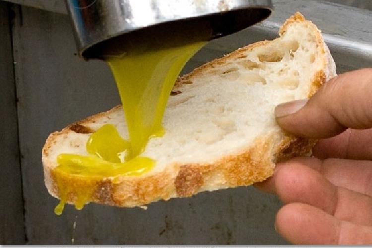https://www.ragusanews.com//immagini_articoli/16-11-2014/clima-crolla-la-produzione-di-olio-siciliano-500.jpg