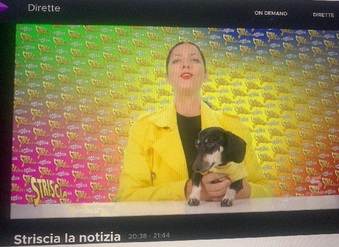 https://www.ragusanews.com//immagini_articoli/16-11-2020/1605559111-caro-tampone-in-sicilia-striscia-la-notizia-cita-ragusanews-1-500.jpg