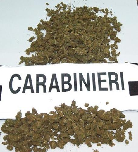 http://www.ragusanews.com//immagini_articoli/17-01-2014/1400-dosi-di-marijuana-in-meno-in-circolazione-500.jpg