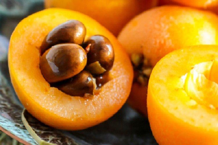 https://www.ragusanews.com//immagini_articoli/17-06-2019/frutta-e-diabete-il-diabetico-puo-mangiare-le-nespole-500.jpg