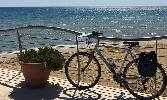 https://www.ragusanews.com//immagini_articoli/17-07-2016/the-guardian-da-siracusa-a-ragusa-in-bici-attraverso-il-val-di-noto-100.jpg