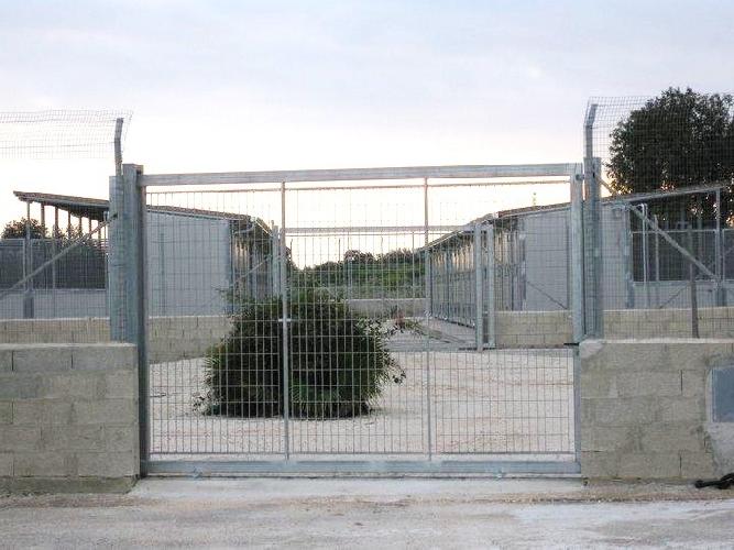 https://www.ragusanews.com//immagini_articoli/17-08-2011/la-procura-di-modica-apre-indagine-sul-canile-di-contrada-aguglie-500.jpg