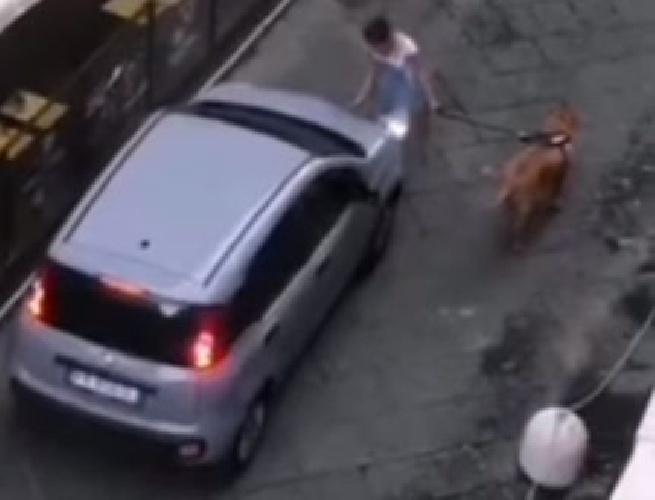 https://www.ragusanews.com//immagini_articoli/17-09-2021/la-ragazza-col-cane-e-l-automobilista-sull-area-pedonale-video-500.jpg