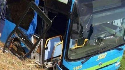 https://www.ragusanews.com//immagini_articoli/17-10-2019/bus-con-trenta-bambini-esce-fuori-strada-e-si-ribalta-decine-di-ambulanze-240.jpg