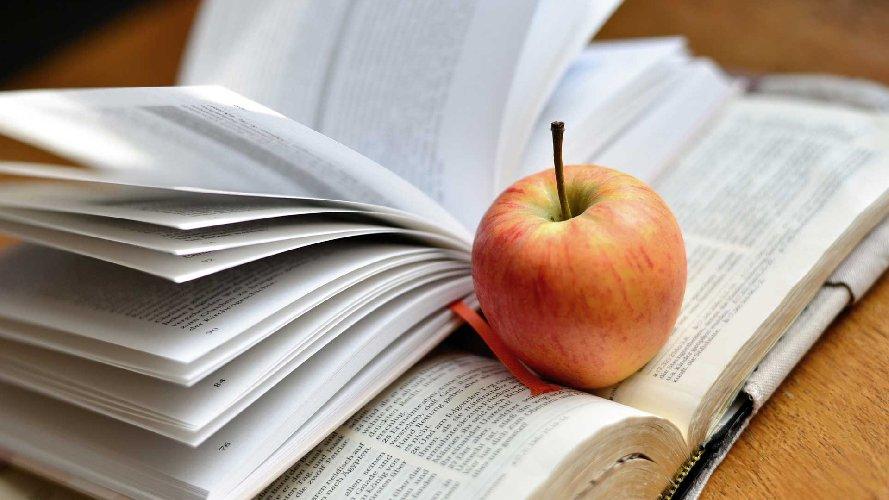 https://www.ragusanews.com//immagini_articoli/17-10-2020/sicilia-scuola-parte-il-concorso-per-insegnanti-500.jpg