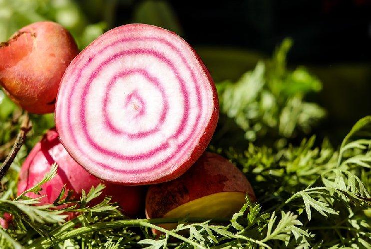 https://www.ragusanews.com//immagini_articoli/17-11-2019/dieta-in-autunno-dimagrire-con-le-barbabietole-500.jpg