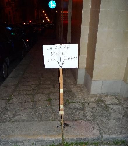 http://www.ragusanews.com//immagini_articoli/17-12-2014/ragusa-campagna-spontanea-contro-le-cacche-dei-cani-500.jpg
